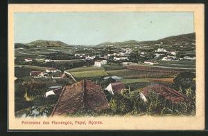 AK Fayal-Acores, Panorama dos Flamengos