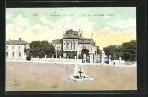 AK Sofia, Le Palais Princier