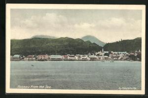AK Roseau, Panorama from the sea