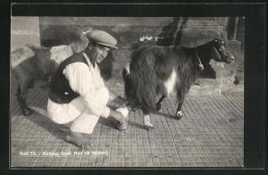 AK Malta, Maltese goat man & milker