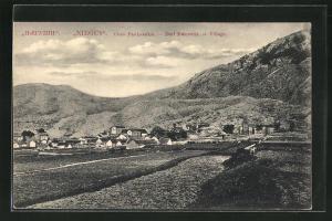 AK Raicevici, Ortsansicht über Häuser und bergige Landschaft