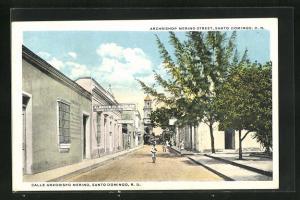 AK Santo Domingo, Calle Arzobispo Merino