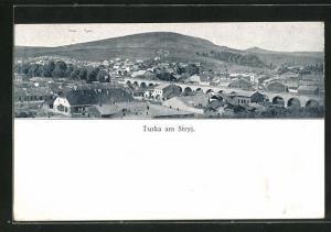 AK Turka am Stryj, Panoramablick auf die Ortschaft