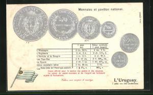 Präge-AK Geldmünzen aus Uruguay, Umrechnungstabelle, Flagge