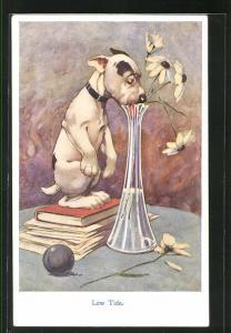 AK Bonzo, Hund steht auf Bücher und versucht an Wasser in Vase zu kommen, Low Tide