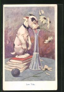 AK Bonzo, Hund steht auf Büchern und versucht das Wasser in Vase zu schlecken, Low Tide