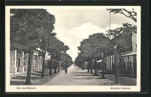 AK Daressalaam, View of Acacia Avenue