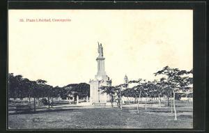 AK Concepción, Plaza Libertad