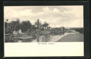 AK Tampico, Rio Tamesin