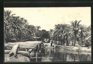 AK Basra, Across the Kora