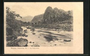 AK Roseau, The Valley River, Blick über Fluss auf Palmen und grüne Berge