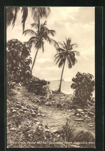 AK Dominica, View from Point Michel to Scott`s Head