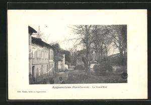 AK Ayguesvives, La Grand`Rue, Strassenpartie