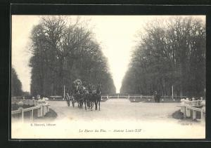 AK Le Pin-au-Haras, Haras national du Pin, Avenue Louis-XIV