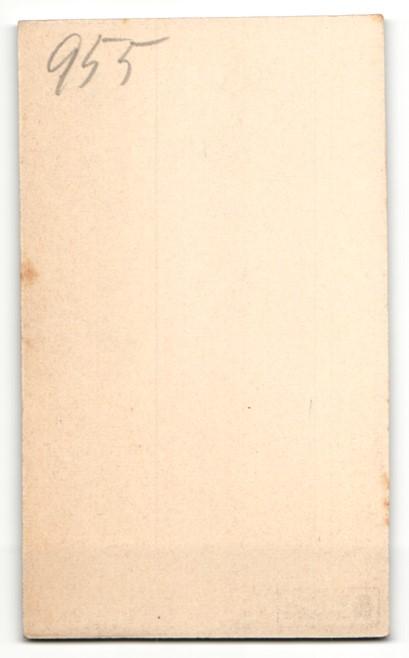 Fotografie Atelier Wertheim, Berlin, Mann im Anzug mit breitem Schnurrbart und gestreiftem Binder 1
