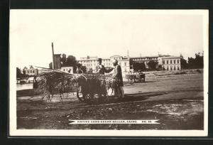 AK Cairo, Native cane-sugar seller