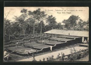 AK Roca Vista Alegre, Taboleiros pa. seccagem do cacao