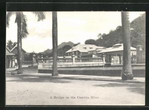 AK Castries, A Bridge on the River