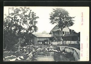 AK S. Tome, Rio Agua-Grande