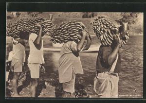 AK Fiji, Einheimische ernten Bananenstauden