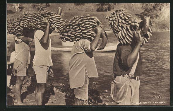 AK Fiji, Einheimische tragen Bananenstauden 0