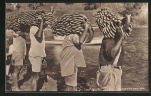 AK Fiji, Einheimische tragen Bananenstauden
