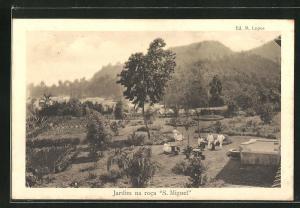 AK Sao Thomé, Jardim na roca S. Miguel