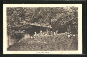 AK Sao Tome, Qubra de cacau