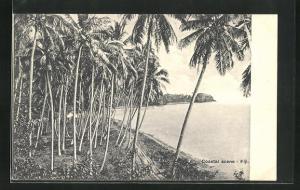 AK Fiji, Coastal Scene with palms