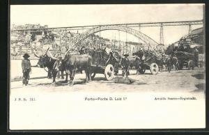 AK Porto, Ponte D. Luiz 1.e