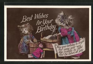 AK Zwei Katzen mit Waschzubern und Puppe, Glückwunsch zum Geburtstag