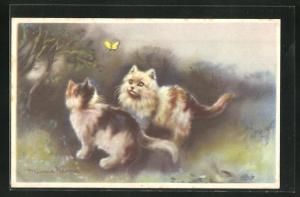 AK Zwei kleine Katzen beobachten einen Schmetterling
