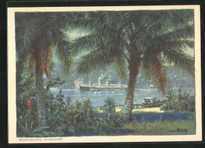 Künstler-AK Hans Bohrdt: Passagierschiff der Hapag in der westindischen Landschaft, Blick von Küste mit Palmen