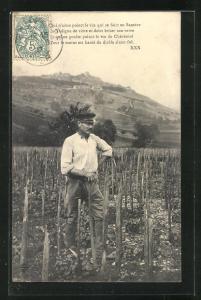 AK Sancerre, Winzer bei der Arbeit im Weinberg