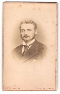Fotografie A. Sternitzky, Braunschweig, Mann im Anzug mit Kotletten und Oberlippenbart