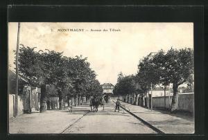 AK Montmagny, Avenue des Tilleuls