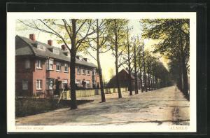 AK Almelo, Bornsche Straat mit Häusern