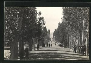 Foto-AK Isfahan, Strassenpartie mit Bäumen