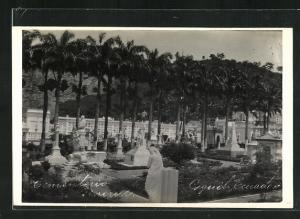 AK Guayaquil, Blick auf den Friedhof