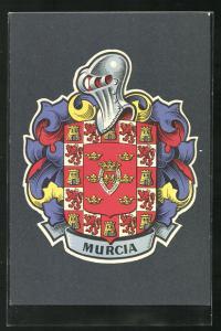 AK Murcia, Ansicht des Wappens