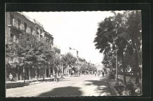 AK Murcia, Avenida de Colon
