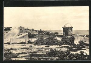 AK Cartagena, Cabrero Walls