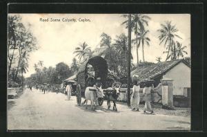 AK Colombo, Colpetty, Road Scene, Rinderkarren