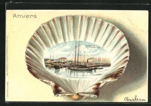 Passepartout-Lithographie Anvers, Le Bassin du Kattendijk, Ansicht auf Muschel