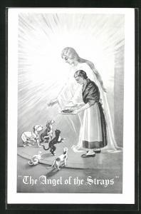 Künstler-AK The Angel of the Strays, Frau füttert streundende Hunde und Katzen, Tierschutz