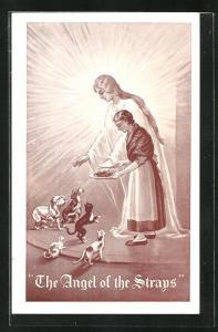 AK The Angel of the Strays, Engel wacht über streunende Tiere, Frau füttert die Hunde und Katzen