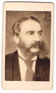 Fotografie Portrait Franz von Dingelstedt, Dichter und Journalist