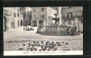AK Assisi, Fontana della Piazza grande - I Colombi