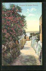 AK St. Georges, Oleanders, Ortspartie