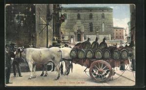 AK Perugia, Carro con buoi